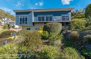 Picture of 5 Gardenia Grove, Sandy Bay TAS 7005
