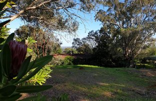 Picture of 13 Banksia Crescent, Athelstone SA 5076