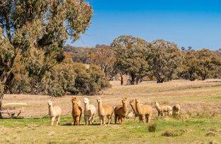 Picture of 993 Gallymont Road, Mandurama NSW 2792