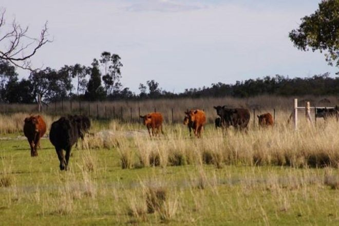 Picture of ATHOLWOOD NSW 2361