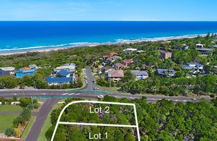Picture of 1 Currawong  Crescent, Peregian Beach QLD 4573