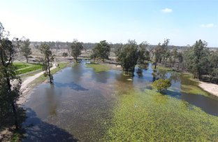 Picture of 179 Brown's Road, Inglewood QLD 4387