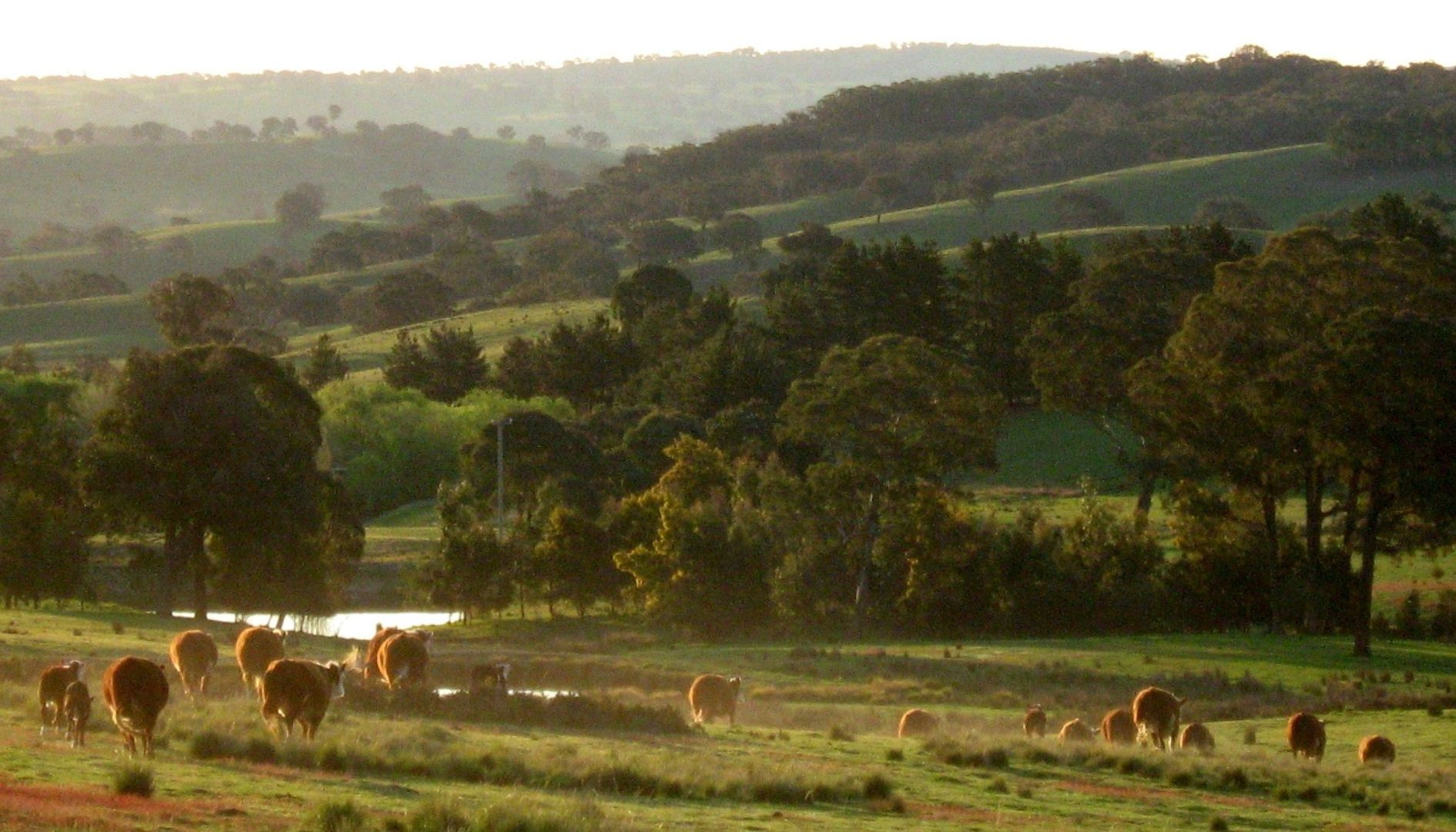 1567 Redground Rd, Crookwell NSW 2583, Image 0