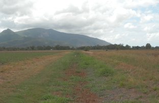 Picture of 152 Piralko  Road, Mount Surround QLD 4809