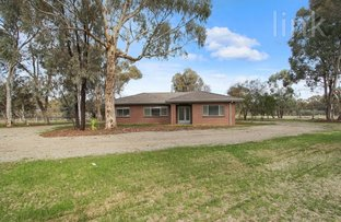 Picture of 117 Corrys Road, Thurgoona NSW 2640