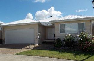 19 Schuffenhauer Street, Norman Gardens QLD 4701