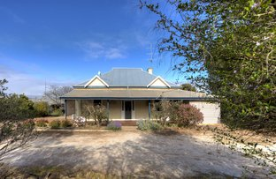 Picture of 53 Goomalling Road, Northam WA 6401