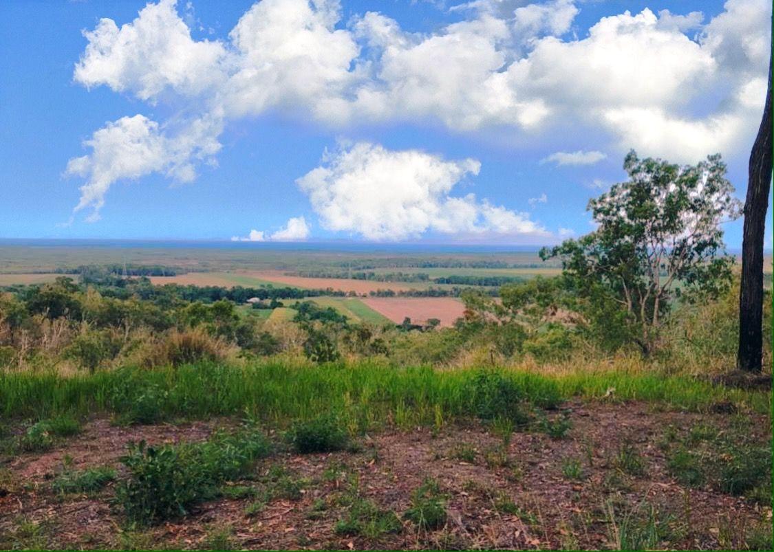 Bruce Highway, Bambaroo QLD 4850, Image 1