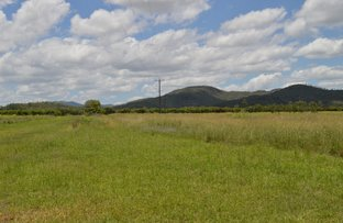 Picture of Mutchilba QLD 4872