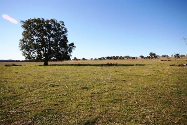 635 Castlereagh Highway, Gulgong NSW 2852, Image 2