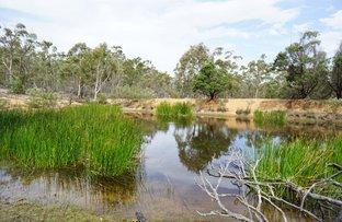 Picture of Lot 71 Palarang Road, Merriangaah NSW 2632