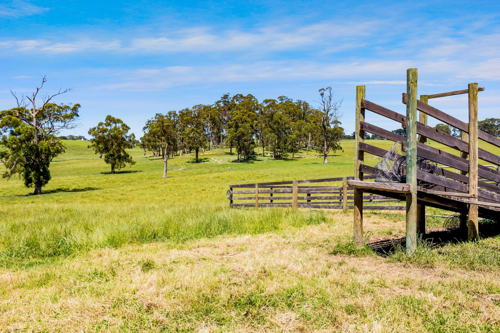 Lot 1 Standfields Road, Poowong North VIC 3988, Image 2
