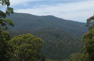 Picture of 120 Warrigal Range Road, Brogo NSW 2550