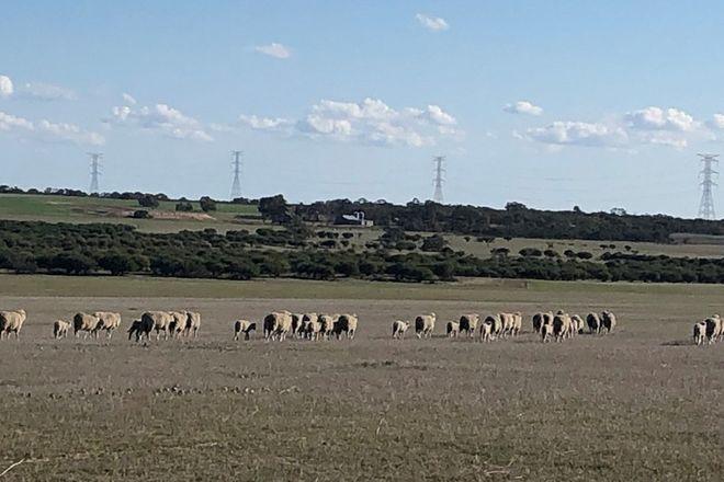 Picture of 1534 Turkey Flat Road Kadathinni, THREE SPRINGS WA 6519