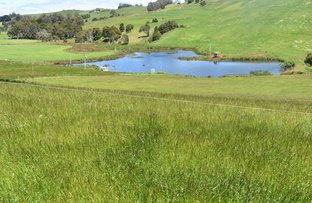 Picture of 355 Natone Road, Stowport TAS 7321