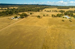 Picture of 281 Robinson Rd, Geham QLD 4352