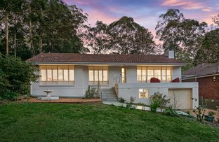 Picture of 25 Kimbarra Road, Pymble NSW 2073