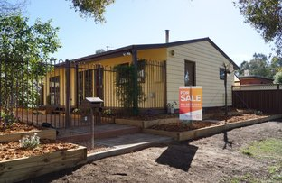 Picture of 1 Centennial Dr, Mooroopna VIC 3629