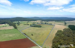Picture of Lot A14/169 Old Blackwood Road, Bullarto VIC 3461