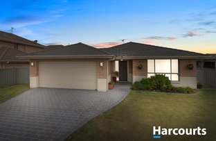 Picture of 38 Niven Parade, Rutherford NSW 2320