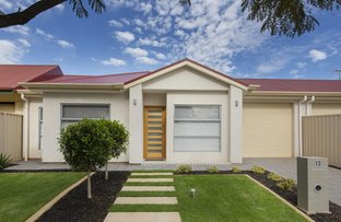 Picture of 12 Newcastle Street, Warradale SA 5046