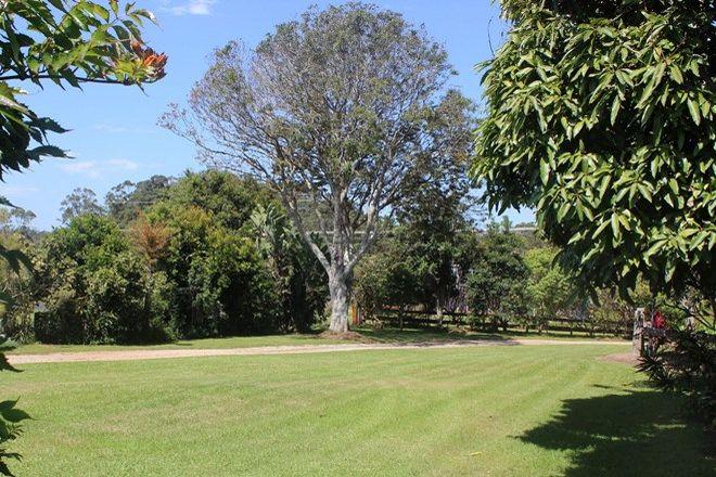 Picture of GUMMA NSW 2447