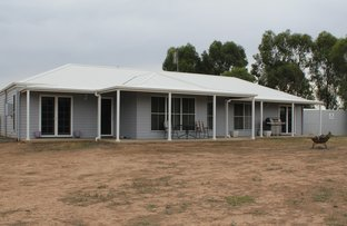 Picture of 530 Cookamidgera Rd, Parkes NSW 2870