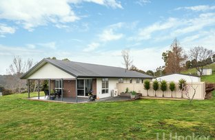 Picture of 5A Linden Heights, Don TAS 7310