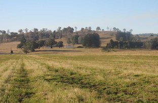 Picture of 1253 Caniaba Road, Clovass NSW 2480