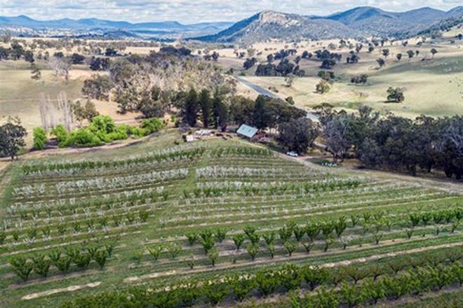 Picture of 8116 New England Highway, TENTERFIELD NSW 2372