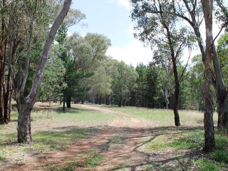 Goolma NSW 2852, Image 0
