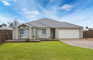 3 Glenalbyn Close, Strathalbyn SA 5255