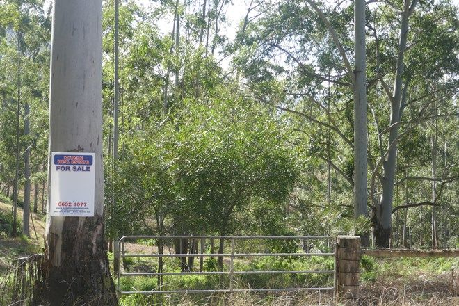 Picture of 136 Forest Road, Lynchs Cr, KYOGLE NSW 2474