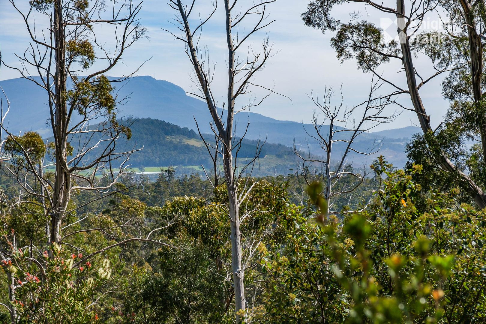 Lot 2 Van Morey Road, Margate TAS 7054, Image 1