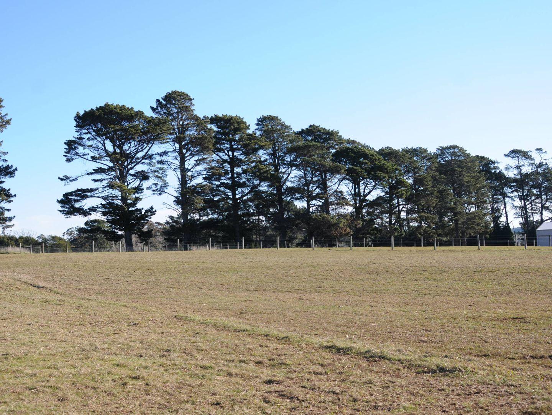 236 Bundanoon Road, Exeter NSW 2579, Image 2