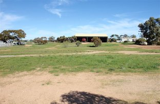 Picture of 54 Eyre Highway, Wudinna SA 5652