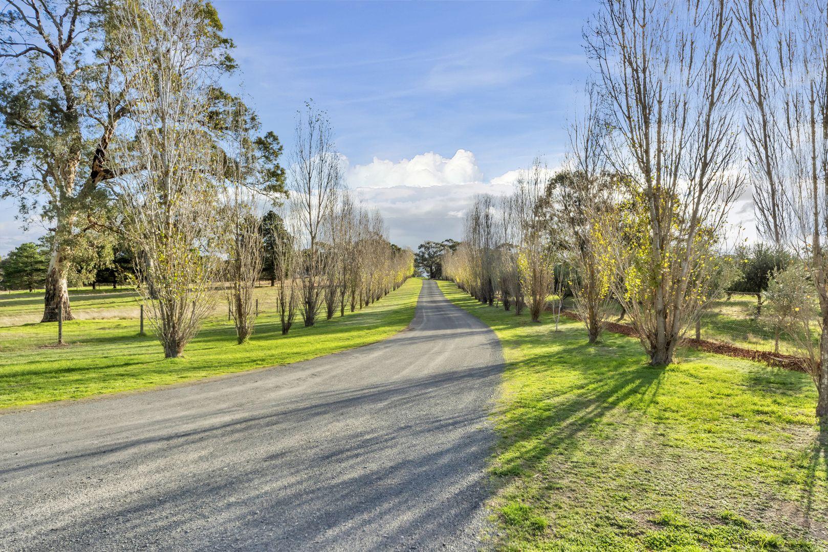 226 Cromer Road, Birdwood SA 5234, Image 1