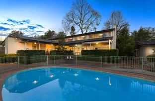 Picture of 43 Bundabah Avenue, St Ives NSW 2075