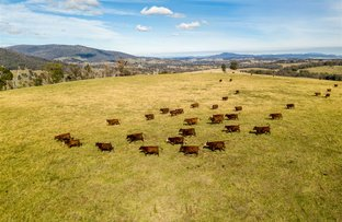 Picture of Sunny View & Christmas Hill, Tumbarumba NSW 2653