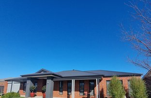 Picture of 6 Wagtail Drive, Kialla VIC 3631