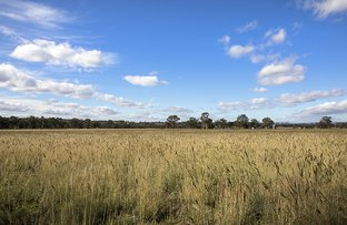"Picture of ""Overleigh"" Leaders Rd, Binnaway NSW 2395"