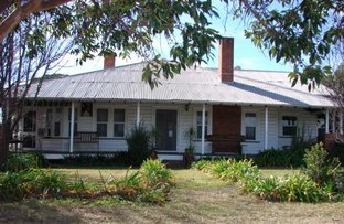 Picture of 22 Mitchell Street, Muswellbrook NSW 2333