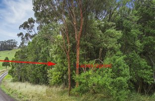 Picture of 62 Broughtons Access, Skenes Creek North VIC 3233