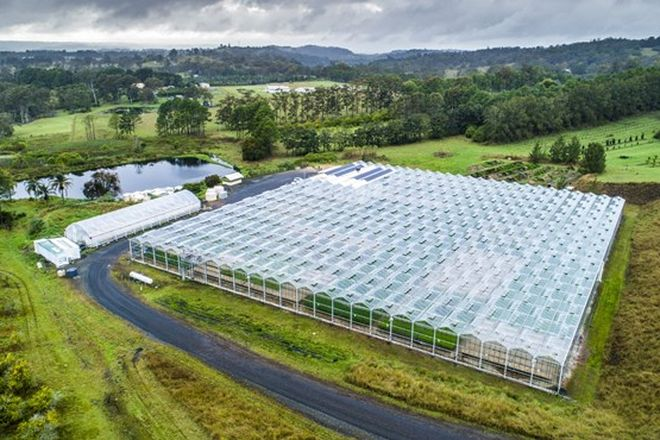 Picture of 368 Fredericks Road, CANIABA NSW 2480