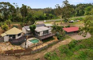 759 Cooroy-Belli Creek Road, Black Mountain QLD 4563