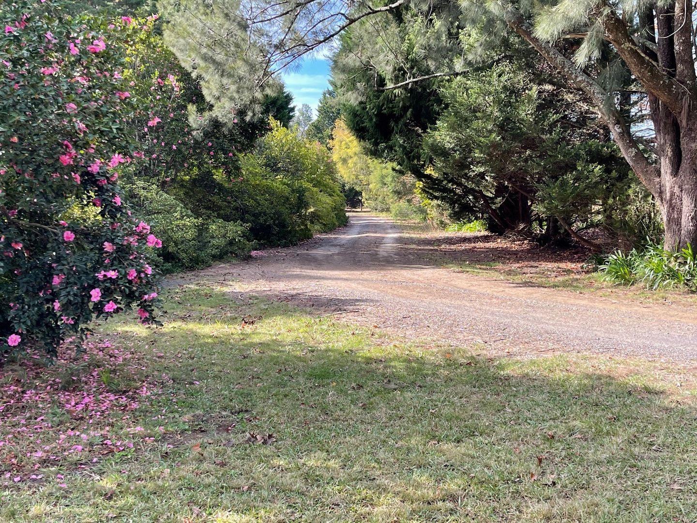 100A Mount Scanzi Road, Kangaroo Valley NSW 2577, Image 1