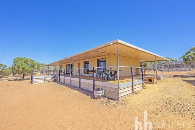 Picture of 176 Mallee Acres Road, FISHER SA 5354