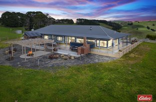 Picture of 187 Amietts Road, Wild Dog Valley VIC 3953