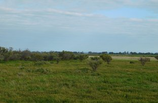 Picture of Lot 566 Telowie Road, Telowie SA 5540