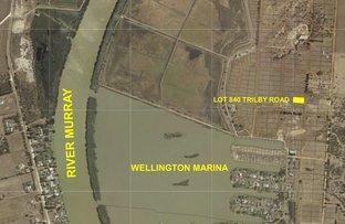 Lot 840 Trilby Road, Wellington East SA 5259